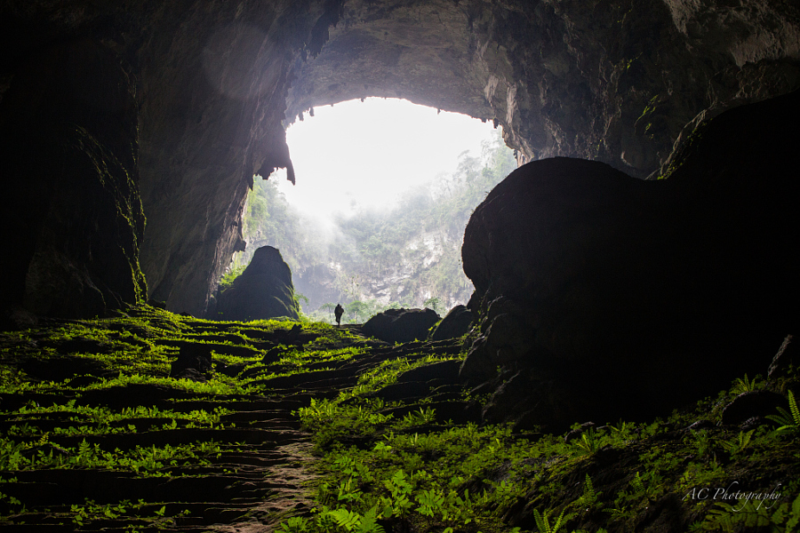 cave vietnam4