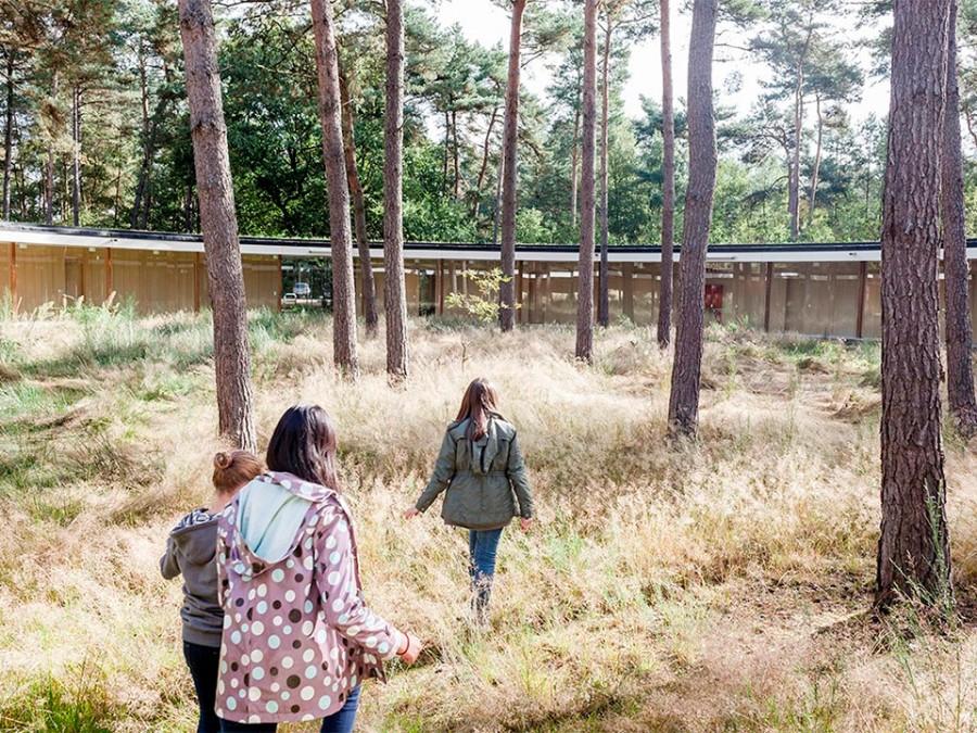 Studio Associato Bernardo Secchi Paola Viganò. Hostel Wadi. De Hoge Rielen, Kasterlee. Belgium. photos Frederik Buyckx (6)